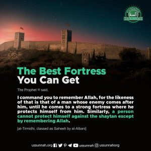 best fortress