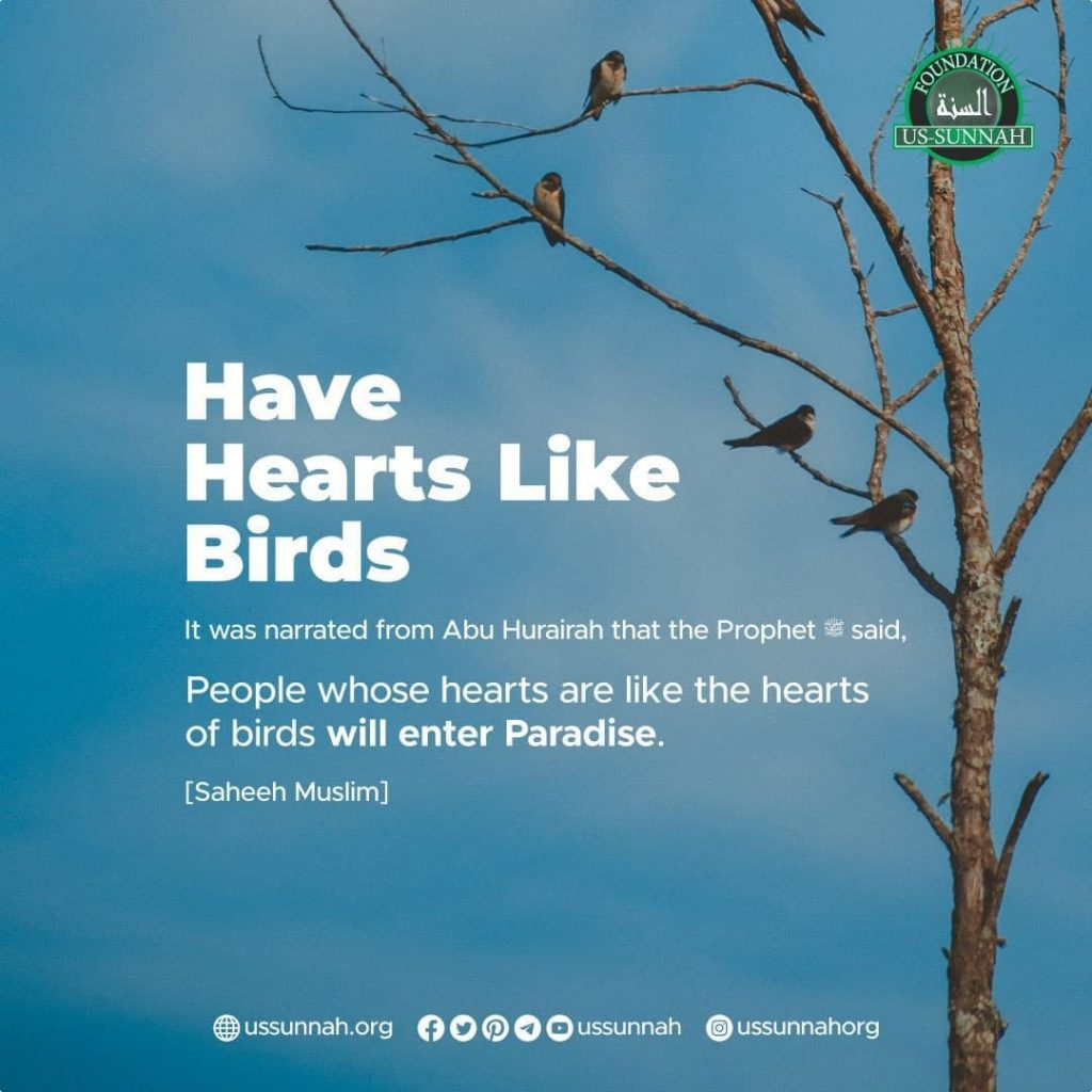 Have Hearts Like Birds
