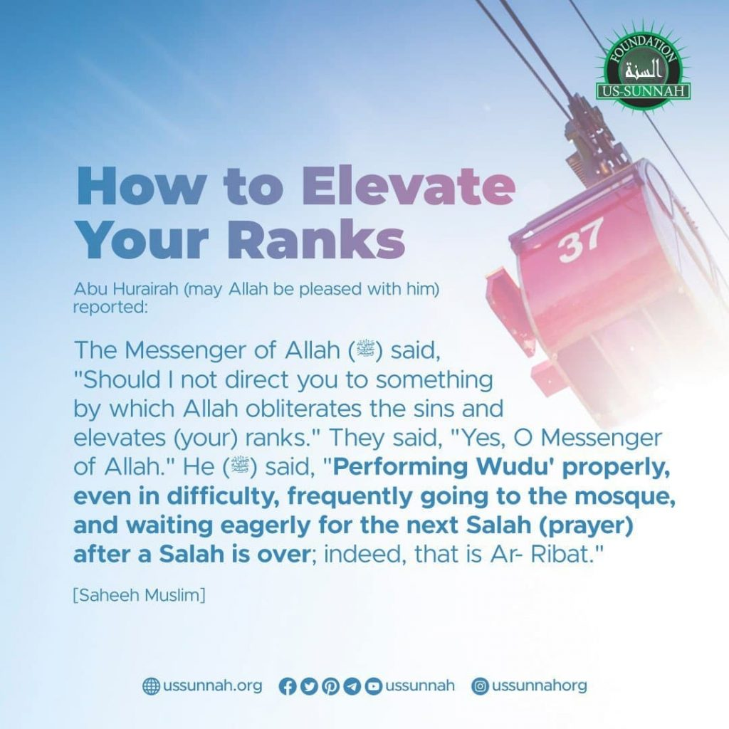 How to Elevate Your Ranks